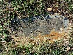 MCNABB, TAYLOR - Sebastian County, Arkansas | TAYLOR MCNABB - Arkansas Gravestone Photos