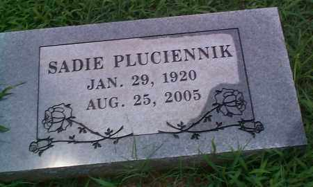 PLUCIENNIK, SADIE - Sebastian County, Arkansas | SADIE PLUCIENNIK - Arkansas Gravestone Photos