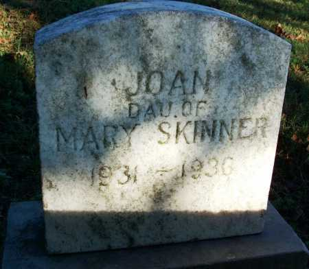 SKINNER, JOAN - Sebastian County, Arkansas | JOAN SKINNER - Arkansas Gravestone Photos