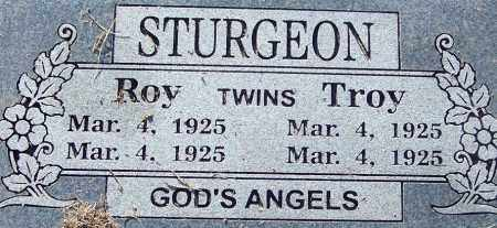 STURGEON, ROY - Sebastian County, Arkansas | ROY STURGEON - Arkansas Gravestone Photos