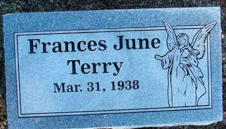 TERRY, FRANCES JUNE - Sebastian County, Arkansas | FRANCES JUNE TERRY - Arkansas Gravestone Photos