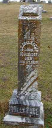 DOLLARHIDE, WILLIAM KING - Sevier County, Arkansas | WILLIAM KING DOLLARHIDE - Arkansas Gravestone Photos