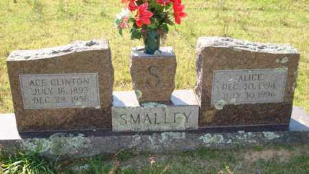 SMALLEY, ALICE - Sevier County, Arkansas | ALICE SMALLEY - Arkansas Gravestone Photos