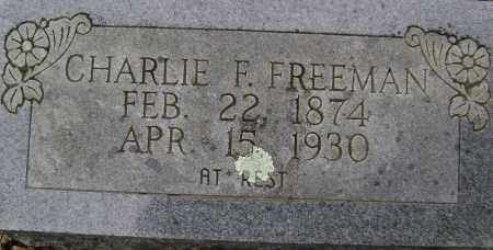 FREEMAN, CHARLIE F - Sharp County, Arkansas | CHARLIE F FREEMAN - Arkansas Gravestone Photos