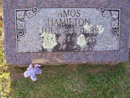 HAMILTON, JAMES AMOS - Sharp County, Arkansas | JAMES AMOS HAMILTON - Arkansas Gravestone Photos