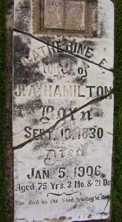 HAMILTON, CATHERINE E. - Sharp County, Arkansas | CATHERINE E. HAMILTON - Arkansas Gravestone Photos