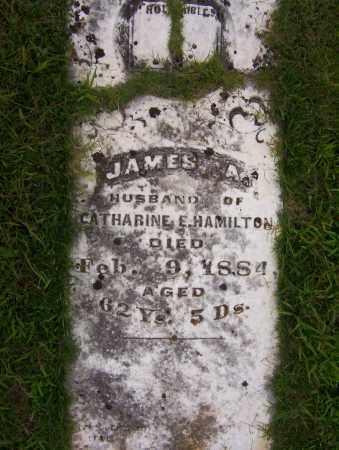 HAMILTON, JAMES A. - Sharp County, Arkansas | JAMES A. HAMILTON - Arkansas Gravestone Photos
