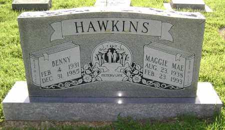 HAWKINS, BENNY - Sharp County, Arkansas | BENNY HAWKINS - Arkansas Gravestone Photos