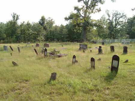 *IRON MONUMENTS, OVERVIEW - Sharp County, Arkansas | OVERVIEW *IRON MONUMENTS - Arkansas Gravestone Photos