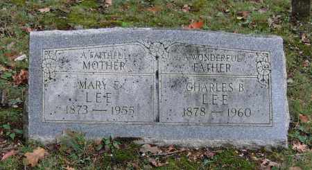LEE, MARY EMILY - Sharp County, Arkansas | MARY EMILY LEE - Arkansas Gravestone Photos