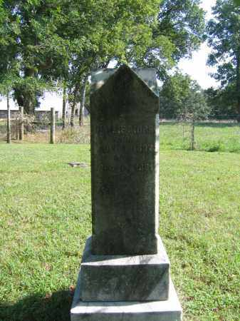 MORE, SALLIE - Sharp County, Arkansas | SALLIE MORE - Arkansas Gravestone Photos