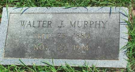 MURPHY, WALTER JACKSON - Sharp County, Arkansas | WALTER JACKSON MURPHY - Arkansas Gravestone Photos