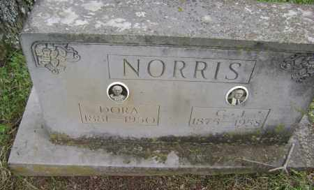 NORRIS, LOU DORA - Sharp County, Arkansas | LOU DORA NORRIS - Arkansas Gravestone Photos