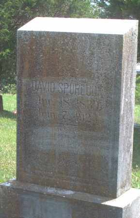 SPURLOCK, DAVID - Sharp County, Arkansas | DAVID SPURLOCK - Arkansas Gravestone Photos