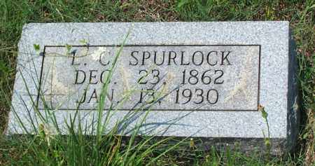 SPURLOCK, LOUISA CATHERINE - Sharp County, Arkansas | LOUISA CATHERINE SPURLOCK - Arkansas Gravestone Photos
