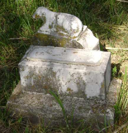 TODD, W M - Sharp County, Arkansas   W M TODD - Arkansas Gravestone Photos