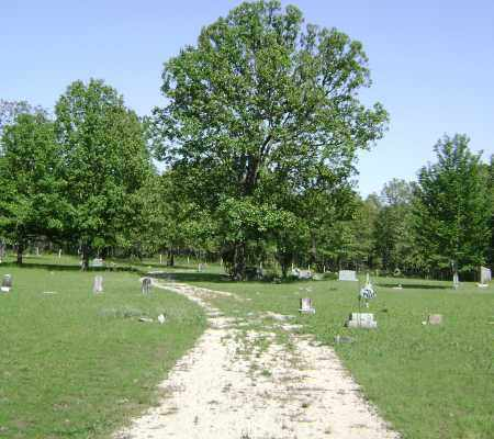 *OVERVIEW,  - Sharp County, Arkansas |  *OVERVIEW - Arkansas Gravestone Photos