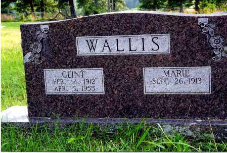 WALLIS, AMY MARIE - Sharp County, Arkansas | AMY MARIE WALLIS - Arkansas Gravestone Photos
