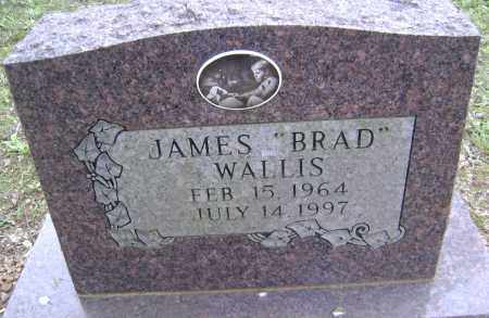 WALLIS, JAMES BRAD - Sharp County, Arkansas | JAMES BRAD WALLIS - Arkansas Gravestone Photos