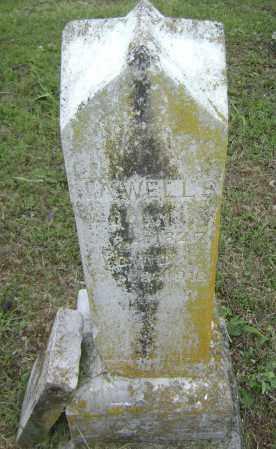 WELLS, NANCY ANN - Sharp County, Arkansas | NANCY ANN WELLS - Arkansas Gravestone Photos