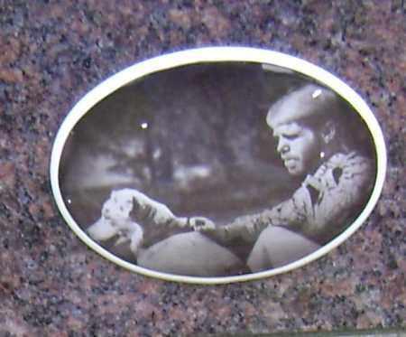 WILLIS (PHOTO), JAMES BRAD - Sharp County, Arkansas | JAMES BRAD WILLIS (PHOTO) - Arkansas Gravestone Photos