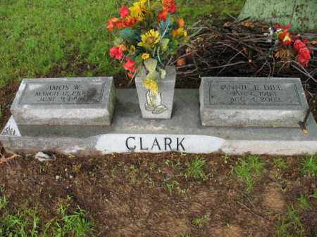 DILL CLARK, ANNIE L - St. Francis County, Arkansas | ANNIE L DILL CLARK - Arkansas Gravestone Photos