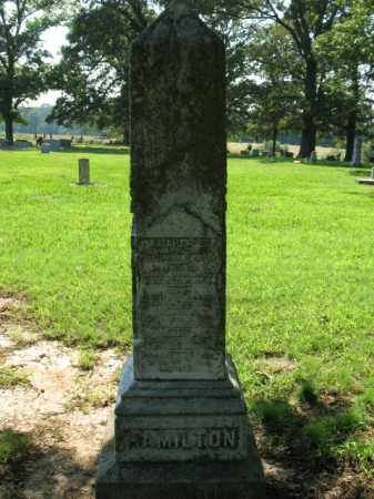 HAMILTON, HOMER - St. Francis County, Arkansas | HOMER HAMILTON - Arkansas Gravestone Photos