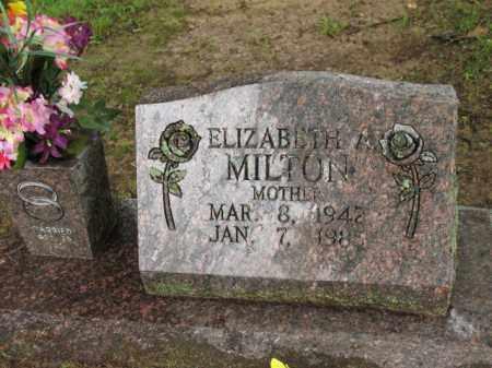 MILTON, ELIZABETH A - St. Francis County, Arkansas | ELIZABETH A MILTON - Arkansas Gravestone Photos