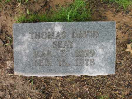 SEAY, THOMAS DAVID - St. Francis County, Arkansas | THOMAS DAVID SEAY - Arkansas Gravestone Photos