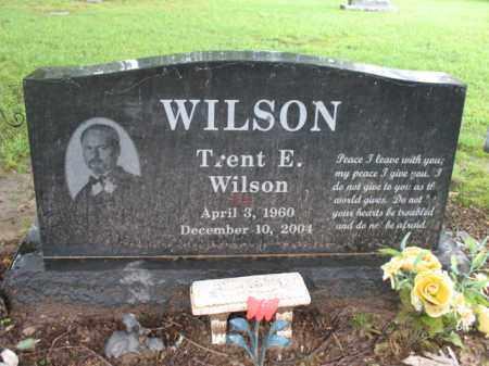 WILSON, TRENT E - St. Francis County, Arkansas | TRENT E WILSON - Arkansas Gravestone Photos