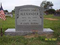 ALEXANDER, HERMAN JAMES - Stone County, Arkansas | HERMAN JAMES ALEXANDER - Arkansas Gravestone Photos