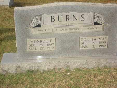 BURNS, MONROE F. - Stone County, Arkansas | MONROE F. BURNS - Arkansas Gravestone Photos