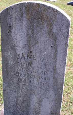 COBB, JANE G - Stone County, Arkansas | JANE G COBB - Arkansas Gravestone Photos
