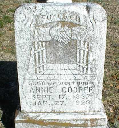 COOPER, ANNIE - Stone County, Arkansas   ANNIE COOPER - Arkansas Gravestone Photos