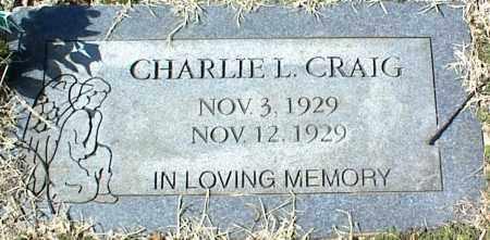 CRAIG, CHARLIE L. - Stone County, Arkansas | CHARLIE L. CRAIG - Arkansas Gravestone Photos