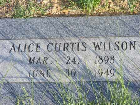 CURTIS, ALICE - Stone County, Arkansas | ALICE CURTIS - Arkansas Gravestone Photos