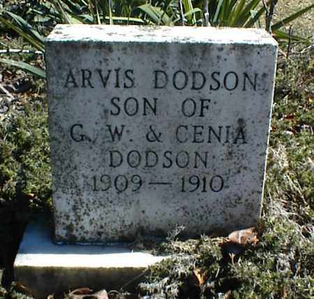 DODSON, ARVIS - Stone County, Arkansas | ARVIS DODSON - Arkansas Gravestone Photos