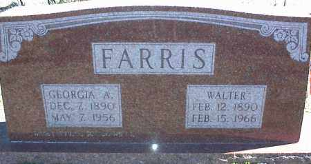 FARRIS, GEORGIA A. - Stone County, Arkansas | GEORGIA A. FARRIS - Arkansas Gravestone Photos