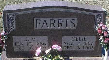 FARRIS, OLLIE - Stone County, Arkansas | OLLIE FARRIS - Arkansas Gravestone Photos
