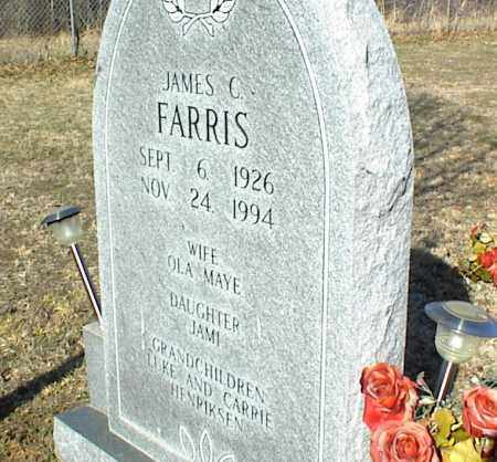 FARRIS, JAMES C. - Stone County, Arkansas | JAMES C. FARRIS - Arkansas Gravestone Photos