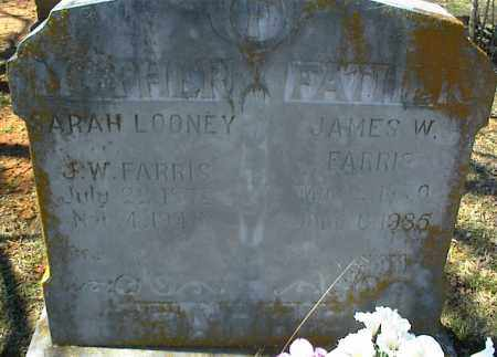 FARRIS, JAMES W. - Stone County, Arkansas | JAMES W. FARRIS - Arkansas Gravestone Photos