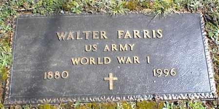 FARRIS (VETERAN WWI), WALTER - Stone County, Arkansas | WALTER FARRIS (VETERAN WWI) - Arkansas Gravestone Photos