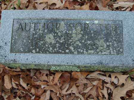FORSTER, AUTHOR - Stone County, Arkansas | AUTHOR FORSTER - Arkansas Gravestone Photos