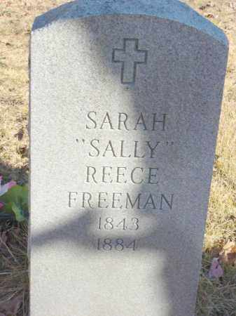 REECE FREEMAN, SARAH SALLY - Stone County, Arkansas | SARAH SALLY REECE FREEMAN - Arkansas Gravestone Photos