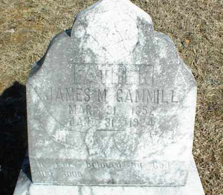 "GAMMILL, JAMES MONAVILLE ""MOUNT"" - Stone County, Arkansas 