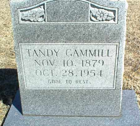 GAMMILL, TANDY - Stone County, Arkansas | TANDY GAMMILL - Arkansas Gravestone Photos