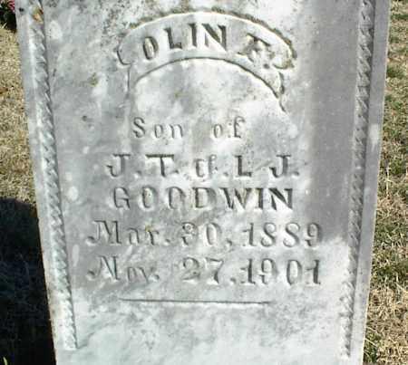 GOODWIN, OLIN F. - Stone County, Arkansas | OLIN F. GOODWIN - Arkansas Gravestone Photos