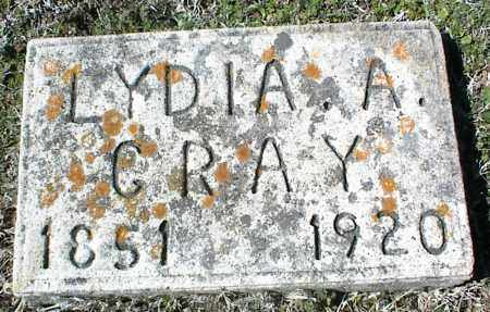 GRAY, LYDIA A. - Stone County, Arkansas | LYDIA A. GRAY - Arkansas Gravestone Photos