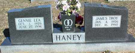 HANEY, GENNIE LEA - Stone County, Arkansas | GENNIE LEA HANEY - Arkansas Gravestone Photos