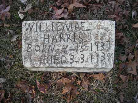 HARRIS, WILLIEMAE - Stone County, Arkansas | WILLIEMAE HARRIS - Arkansas Gravestone Photos